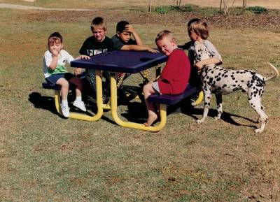 Elementary 6' and 8' Regal Picnic Table - Portable - Image 1